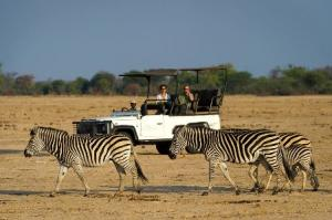 Hwange National Park, Game drive