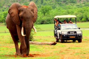 The Ultimate Zimbabwe Adventure Tour Packages
