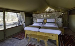 Little Makalolo Camp, Double Room